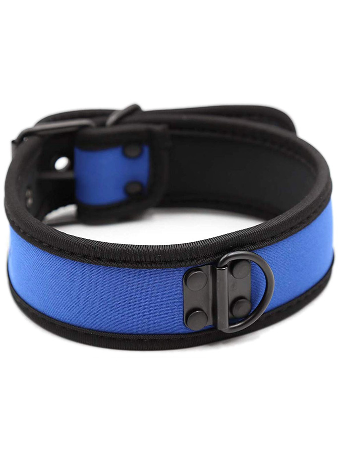 Pupplay Neoprene Collar - Blue